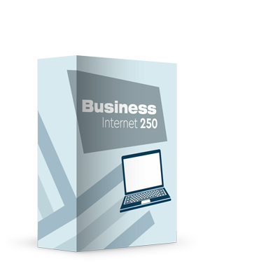 BUSINESS  250